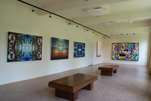 The Vlaar Collection in The Bright Room Gallery
