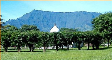 Da Love-Ananda Mahal Sanctuary, with Mt. Waialeale in the background