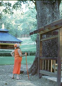 Adi Da blessing the Tree of Life at Skyway Temple, 1998